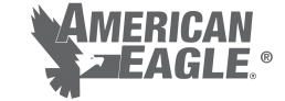 American Eagle Accessories logo.